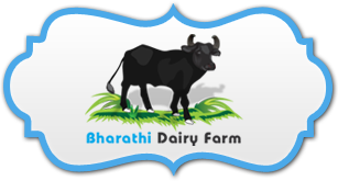 Bharathi Dairy Farm sells pure breed Murrah Buffaloes