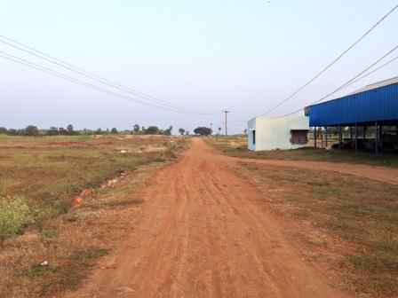 60 Acres Agricultural Land And Modern Dairy Farm For Sale